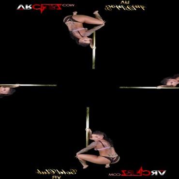 Sample video frame
